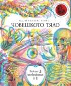 Магически свят: Човешкото тяло