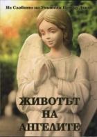 Животът на ангелите (Из Словото на Учителя Петър Дънов)